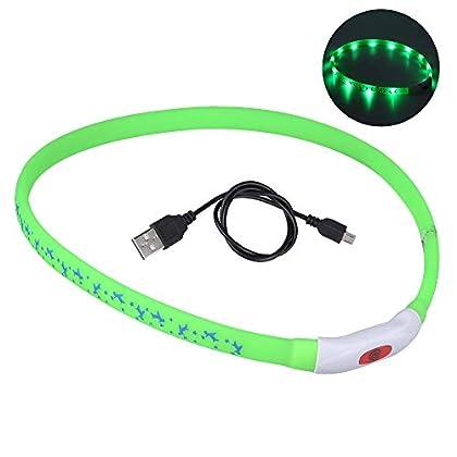 🐶【Schützen Sie Ihren Hund】 DIAOPROTECT LED Hundehalsband Leuchtend hat eine Sichtweite von 500 m, um zu verhindern, dass Ihr Hund beim Gehen auf schneebedeckten Straßen, in der Dämmerung, in der Nacht, im Wald oder auf Verkehrswegen verloren geht. Mi...