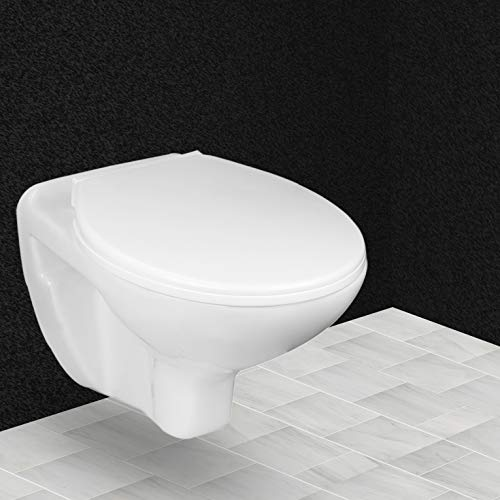 Hindware Flora One Piece Wall Mounted Western Toilet Commode (Starwhite)