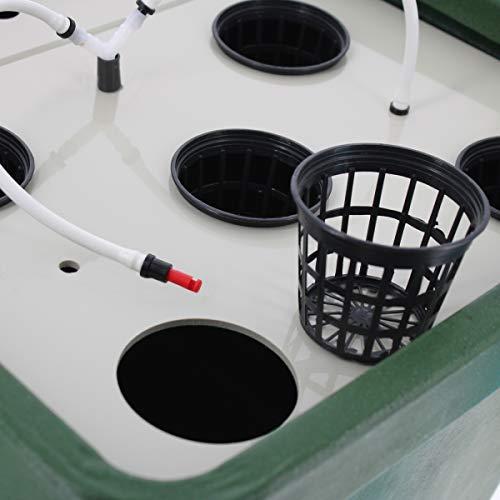 Aeroponic Growing System / Hydroponics GHE AeroFarm 2