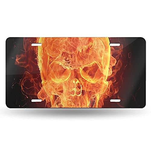 XCNGG Placa de matrícula de Calavera con Llamas de Fuego, Etiqueta de tocador, Placa Frontal Decorativa novedosa de Aluminio de 6 x 12 Pulgadas