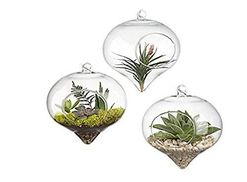 Siyaglass Pack of 3 Hanging Terrarium Glass Vase Flower Air Plant Pot Container Home Office Wedding Decoration Heart Shape