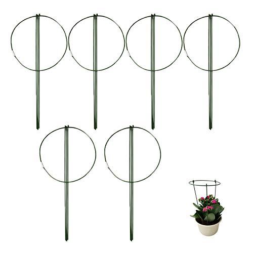 æ— 6 Stück Gartenpflanzen-Stützringe, 27,9 cm, Metall, rund, Rankhilfe für Pflanzen, grüner Garten, Pflanzen-Halter, Blumengitter für Miniatur-Rose, Orchidee, Kaktus, Kletterpflanzen