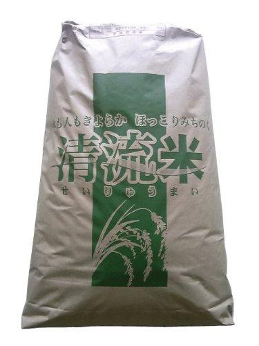 【玄米30kg】最高ランク特A地区 宮城県登米市産 つや姫 [玄米30kg/白米25kg/無洗米25kg]要選択 1等米