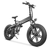 TDHLW Bicicleta Eléctrica Plegable Neumático Gordo de 20 Pulgadas 36V 10.4AH Batería Desmontable, Pantalla LCD Bicicleta Eléctrica de 7 Velocidades Gear City Commuter,Negro
