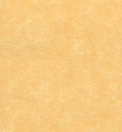 Antique Gold Parchment Paper 24lb, Size 8.5 X 11 Inches, 50 Sheets Per Pack