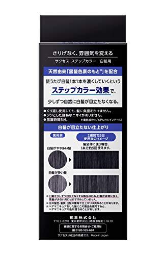サクセスステップカラー110g