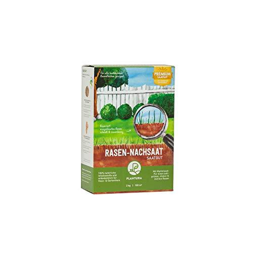 Plantura Rasen-Nachsaat, 2 kg, schnellkeimend mit Mantelsaat, Rasen ausbessern & nachsäen, Premium-Saatgut