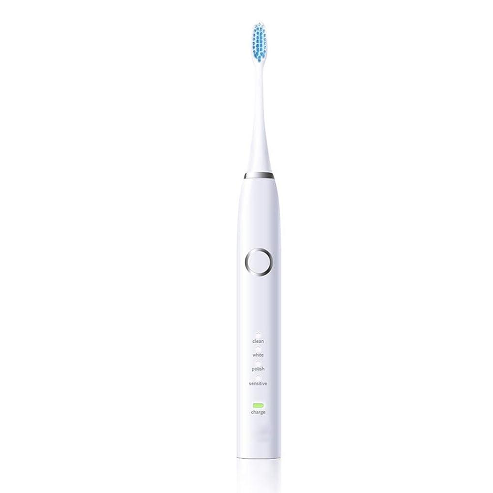まろやかな不器用ビザ電動歯ブラシ 電動歯ブラシUSB充電式保護クリーン歯ブラシ (色 : 白, サイズ : Free size)