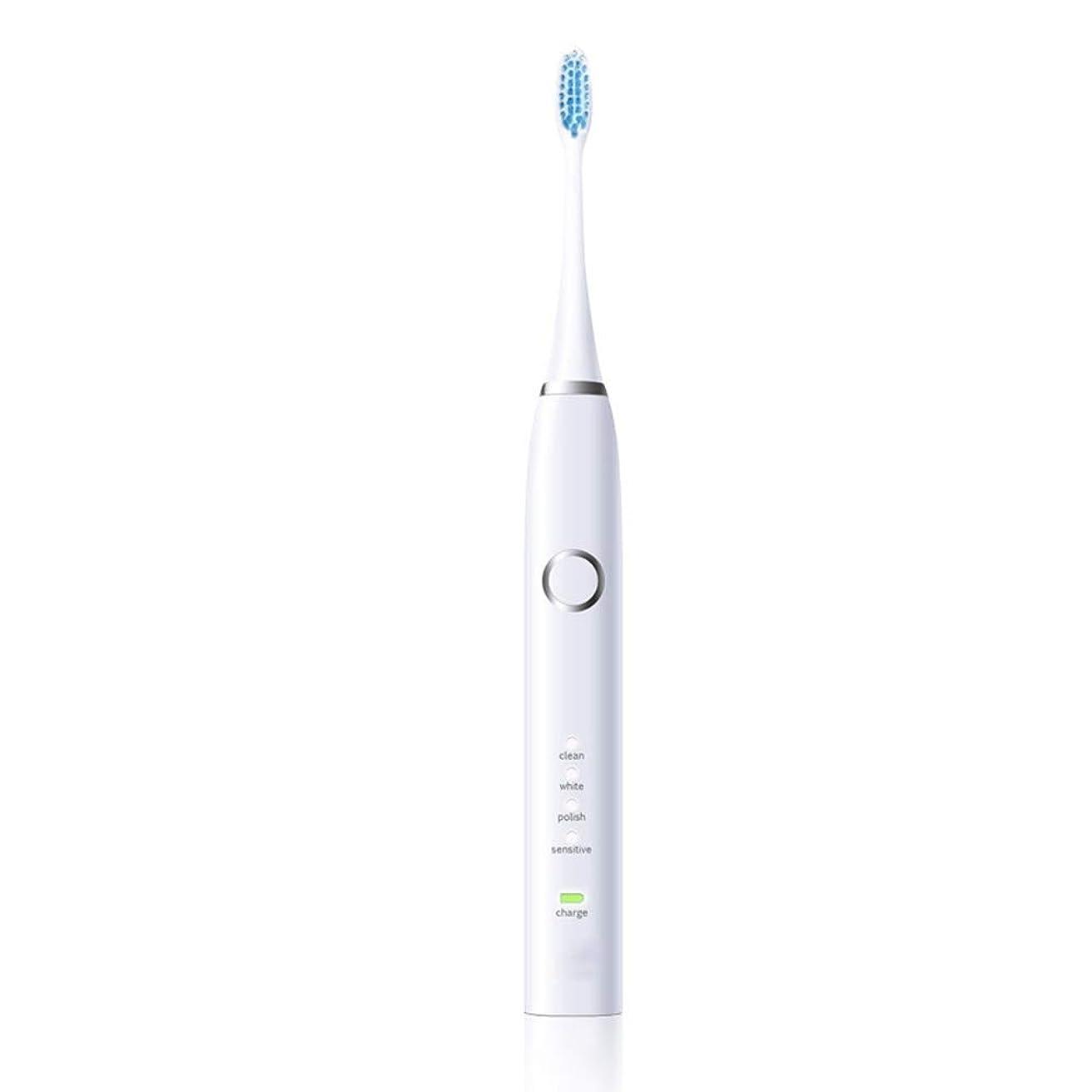 ティーンエイジャー解説介入する電動歯ブラシ 再充電可能なUSBが付いている大人の白い電気保護きれいな歯ブラシ (色 : 白, サイズ : Free size)