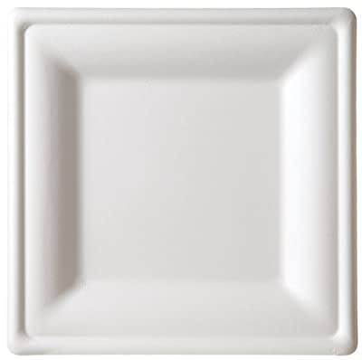 Eco-Products Compostable Square Sugarcane Plates - Large - Case of 250 - EP-P023