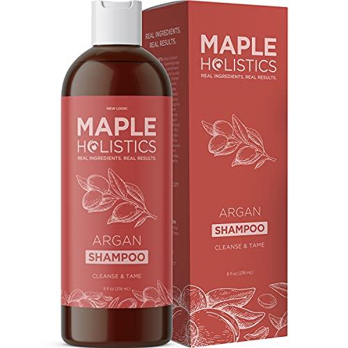Argan Shampoo for Dry Damaged Hair - Moroccan Argan Oil Shampoo for Dry Hair Frizz Control and Dry Scalp Care - Moisturizing Shampoo for Curly Hair Care and Hair Moisturizer for Dry Damaged Hair
