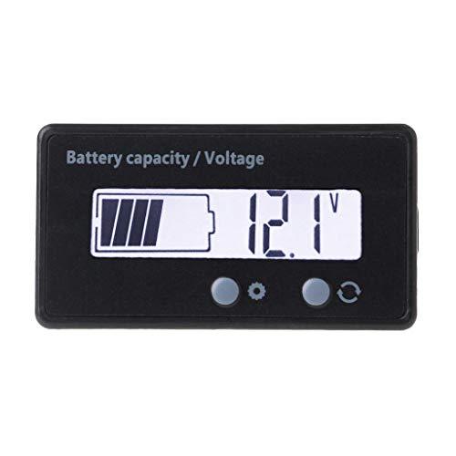 Yinuneronsty 12 V/24 V/36 V/48 V LCD ácido plomo batería de litio...