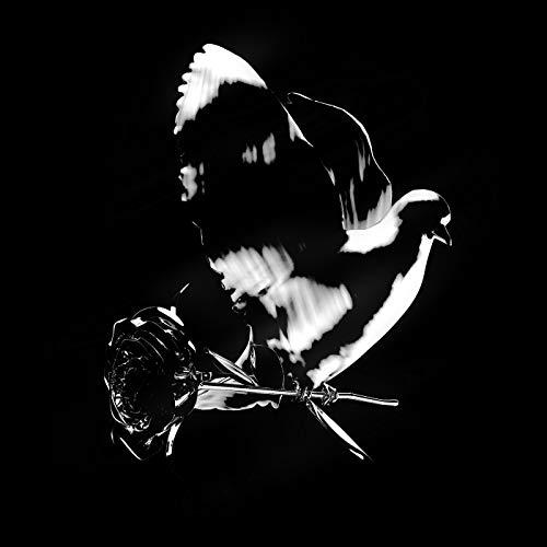 Enjoy Yourself [Clean] [feat. KAROL G]