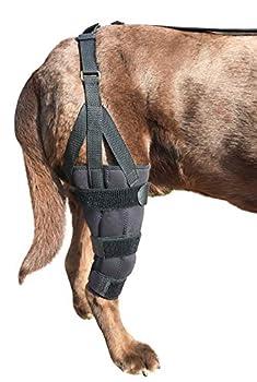 Labra Dog Canine K9 Knee Stifle Brace Wrap Metal Splint Hinged Flexible Support Treat ACL CCL Luxating Patella Cruciate Ligament Sprain Strain Tear Injuries