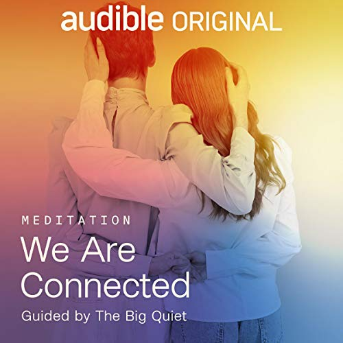 We Are Connected Audiobook By The Big Quiet cover art