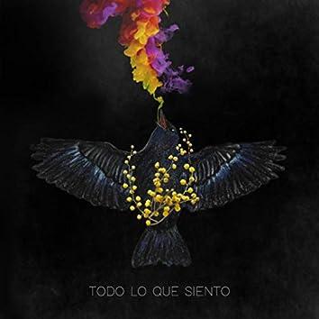 Todo Lo Que Siento (feat. Sophi Lira)