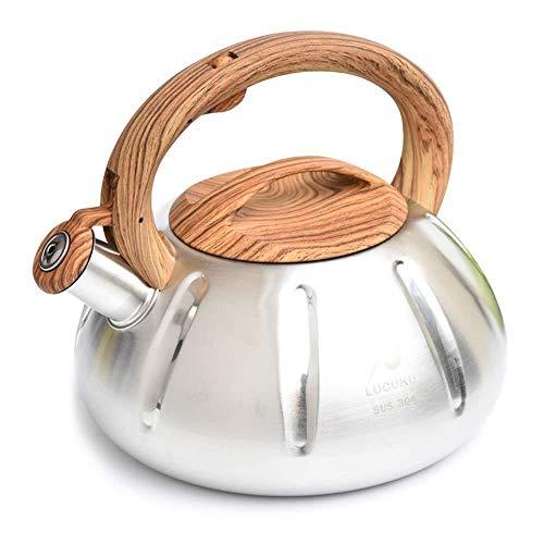 Théière Cuisinière Bouilloire en Acier Inoxydable, Grande capacité Whistling Kettle Eau Chauffe-Eau en Acier Inoxydable Chaudière for Cuisinière à gaz Cuisinière à Induction