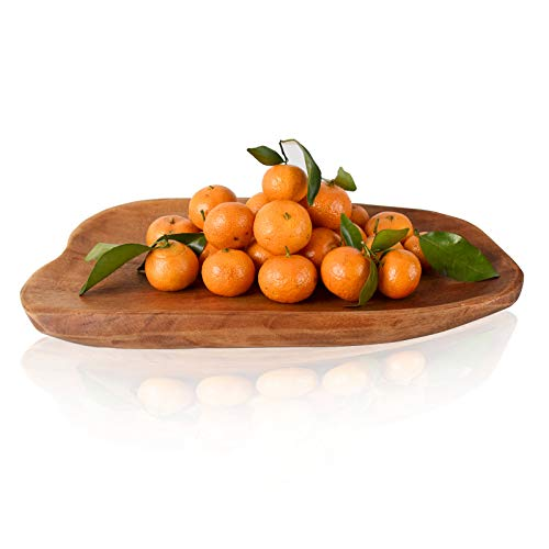 Unique Wooden Serving Tray, Handmade Nature Root Wood Dish, Large Wooden Platters for Fruit Bread Appetizer Display(13.7'')