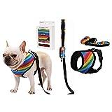 RC GearPro Atmungsaktives Hundegeschirr mit Hund und Hund, Müllbeutel, ohne Zug, atmungsaktiv, gepolsterte Hundeleine Kragen Brustgurt Weste mit Griff für kleine, mittelgroße Hunde (L, Multicolor)