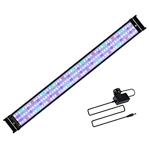 JOYHILL LED Full Spectrum Aquarium Lights, Fish Tank Light with Extendable Brackets,Suitable for Aquatic Reef Coral Plants and Fish Keeping 31W (Fit 95cm-115cm/37-45 inch)