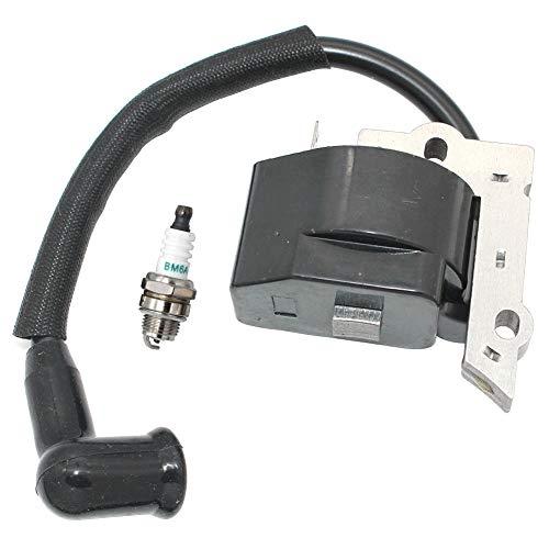 Módulo de bobina de encendido con bujía BM6A para Husqvarna Mondo Mondo Max 18H 21LCN 530039163 530052266