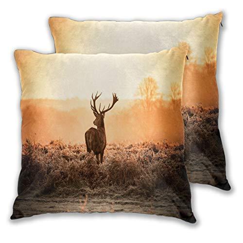 TISAGUER Set di 2 Fodere per Cuscini 45x45cm,Cervi rossi al sole del mattino Paesaggio di natura...