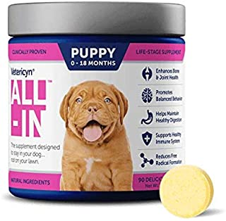 Vetericyn All-in Dog Supplement. Naturally Safe Daily Supplement with Optimal Absorption Technology. Bone and Joint Suppor...