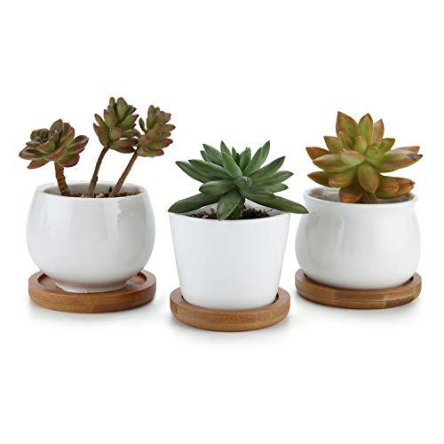 T4U 6/7/7CM Runde Modern Weiß Sammlung No.31 Keramik Sukkulenten Töpfe Kaktus Pflanze Töpfe Mini Blumentöpfe MTI Untersetzer 3er Set