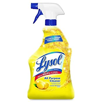 Best lysol cleaner all purpose Reviews