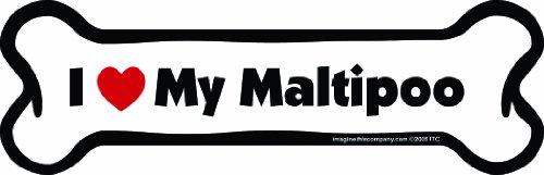 Imagine This Bone Car Magnet, I Love My Maltipoo, 2-Inch by 7-Inch