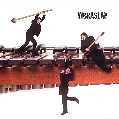 Vibraslap
