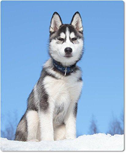 Muismat/muismat van textiel met achterkant van rubber antislip voor alle muistypen motief: Husky slee zit in de sneeuw voor blauwe hemel | 07
