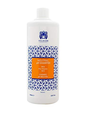 Valquer - Shampoo rivitalizzante professionale con pH neutro e pro-vitamina B5, 1000 ml
