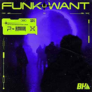 Funk You Want