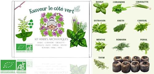 Kit pronto a crescere - Semi di erbe aromatiche da piantare (basilico, coriandolo, erba cipollina, dragoncello, aneto, cerfoglio, menta, rosmarino, prezzemolo, timo) Giardinaggio 100% organico