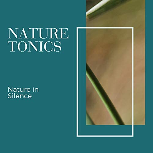 Calming Sounds & Nature Radiance