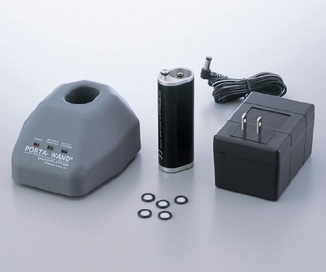 苦ポーク究極の真空ピンセット交換用バッテリー