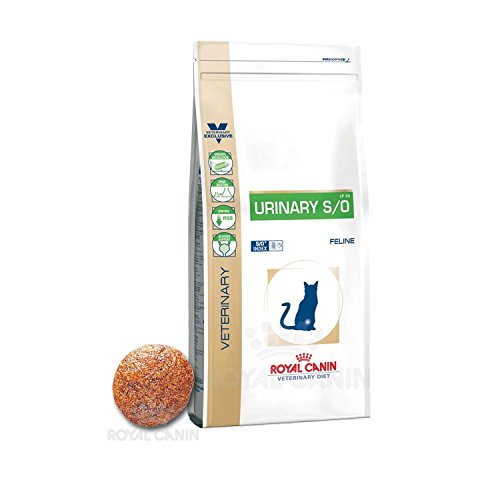 royal canin urinary katze