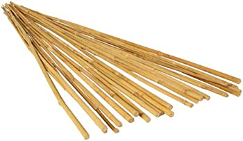 25-Pack Hydrofarm 3 Ft Long Bamboo Stakes