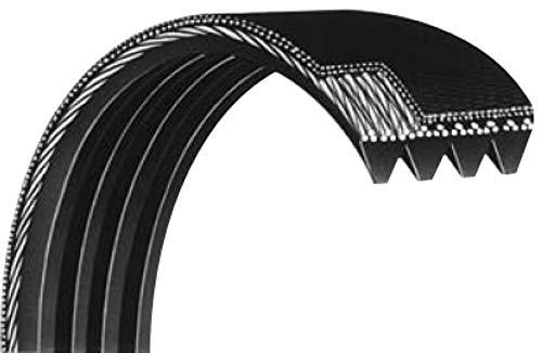 Courroie Striée 373PJ4 dents élastique pour Mini-Compresseur