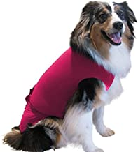 Surgi~Snuggly Disposable Dog Diapers Female or Male Made with American Textile, Keeps Pets Safe - Wrap Around Legs for Superior Fit - Fits (MS-PK)