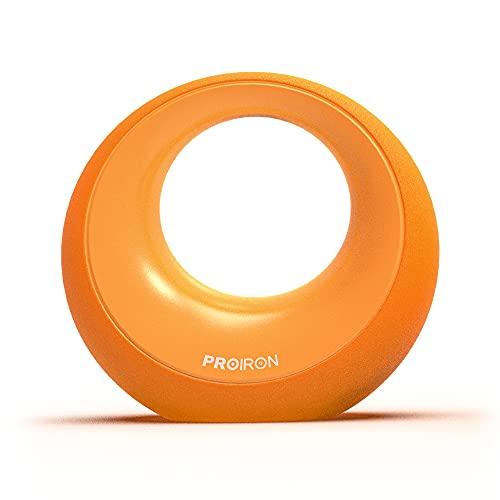 PROIRON Kettlebell ghisa 8KG - Crescent Kettlebell con impugnature in plastica Antiurto e Antiscivolo per Allenamento di Forza, Ginnastica e Allenamento a casa