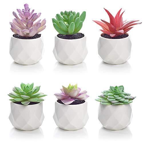 6 Pack Artificial Succulent Plants, Lvydec Mini-Sized Fake Succulent Plants in Pots for Home Bath Office Shelf Decoration, Porcelain Pots