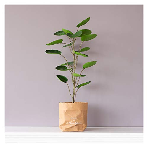 Planta Artificial Artificial en maceta plantas artificiales violín Hoja Higuera Faux falso árbol en bolsa de papel Kraft Pot for la decoración de interiores 27.6 pulgadas -1 Pac Planta Falsa Decorativ