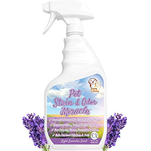 Pet Stain & Odor Miracle - Enzyme Cleaner for Dog and Cat Urine, Feces, Vomit, Drool (Light Lavender Scent, 32 FL OZ)