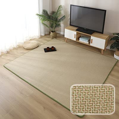 shopping JYXJJKK Vine Mattress Cool Carpet Bedroom Air-Condit Living Room Max 40% OFF
