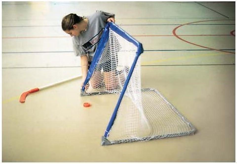 のれんこする騒GOAL RHS34 Fold-Up Hockey Goal