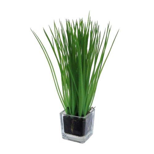 Kunstblumen Gras, Grasbusch mit Wurzelballen ca 23 cm. IM Glas ca 5 x 5 cm.