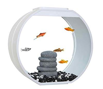 Fish R Fun Deco Fish Tank