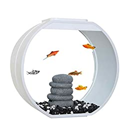Fish R Fun Deco Fish Tank